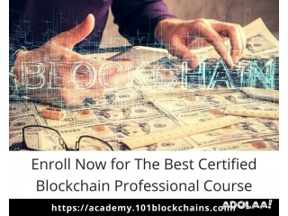 Enroll Now for The Best Certified Blockchain Professional Course