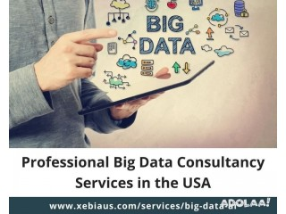 Big Data & Analytics Consulting Services in the USA