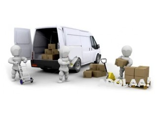 Wilson's Movers & More
