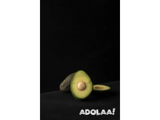 Quality Avocado Delivered Right to Your Door