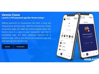 Venmo clone app- Launch the safest P2P payment application with Turnkeytown.
