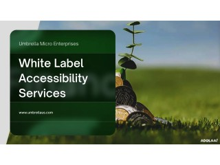 Umbrella brings White label website accessibility services with Affordable Range