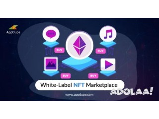 Get the Top-notch White-label NFT Marketplace