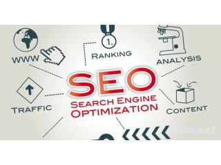 Data-Driven SEO Services for Small Businesses