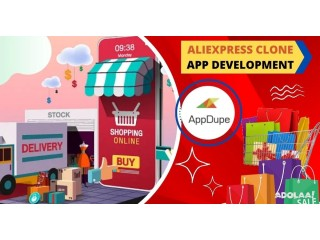 Modernize your digital selling business by commencing AliExpress Clone