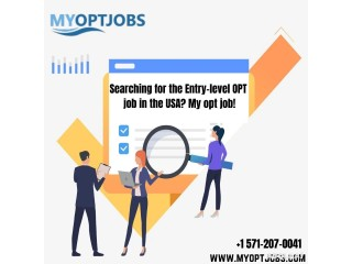 Searching for the Entry-level OPT job in the USA? My opt job!