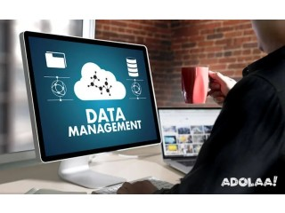 Get Data Management Services For All Business