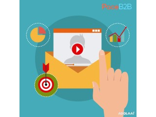 Business Email Database USA
