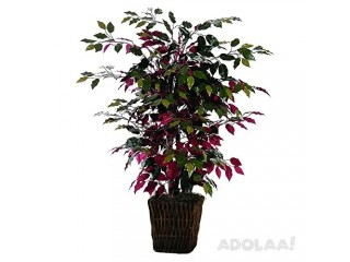 Discover the Artificial Indoor Plants