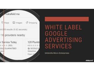 Exclusive Deas on White Label Google Advertising Services with Umbrella