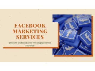 Great Option Facebook Marketing Services with Umbrella Local